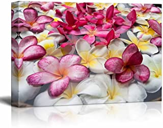 wall26 - Canvas Prints Wall Art - Multicolored Plumerias Floating in The Water | Modern Wall Decor/Home Decoration Stretched Gallery Canvas Wrap Giclee Print. Ready to Hang - 16