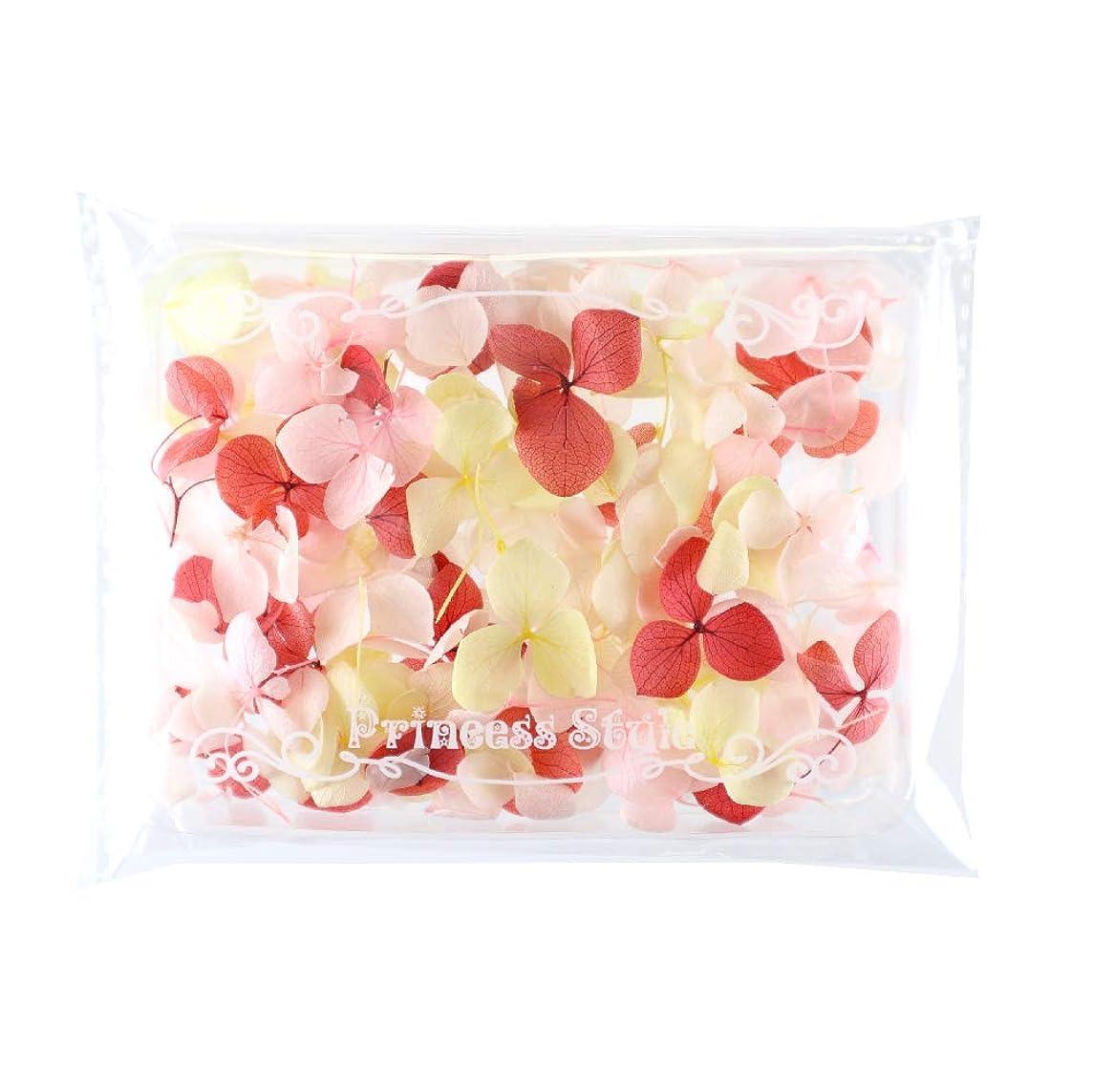 段階平衡ゴシップあじさい 花びら プリザーブドフラワー 花材 レジン アクセサリー用 アソートセット (暖色系)