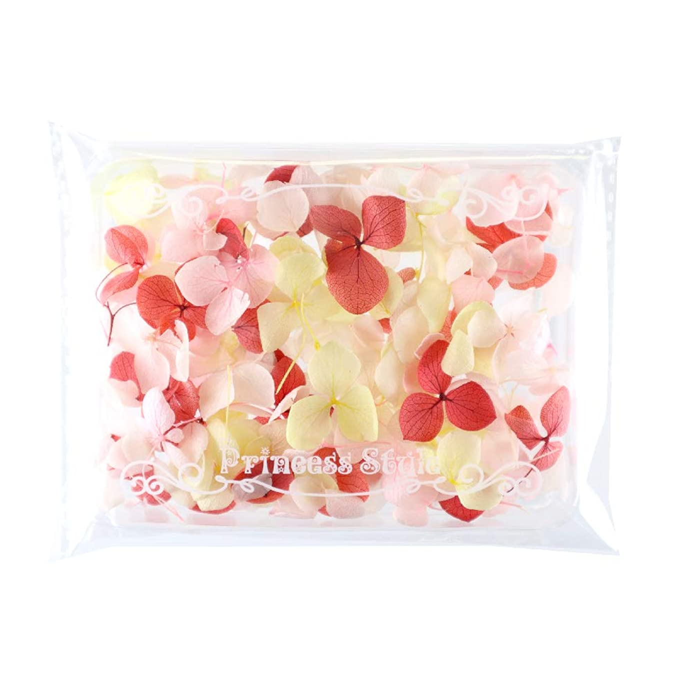 置き場伝統反応するあじさい 花びら プリザーブドフラワー 花材 レジン アクセサリー用 アソートセット (暖色系)