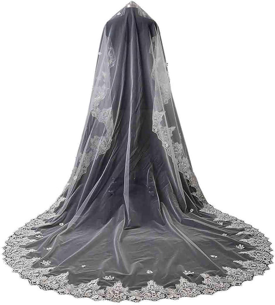 Bridal Veil Full Lace Appliques Trim Wedding Veil Crystal Rhinestones 1 Tier