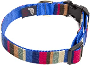 A Tail We Could Wag Dog Collar - at The Beach
