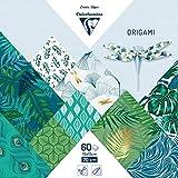 Clairefontaine 95354C – 1 funda origami 60 hojas, 15 x 15 cm, 70 g, diseños surtidos (30 diseños x 2 hojas), vegetal chic