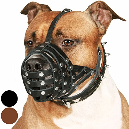 CollarDirect Pitbull Dog Muzzle Leather Amstaff Muzzles Staffordshire Terrier Secure Basket (Black)