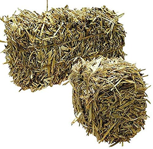 Green Vista Barley Straw Bales for Farm Pond Water Treatment - 8 to 10 Pounds - Treats 1/4 Acre Farm or Retention Pond for 6 Months! - Supports Water Balance - Safe for Koi, Fish and Plants