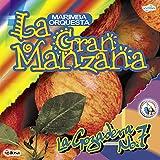 Mix de Aniceto Molina: El Gallo Mojado / La Danza de la Chiva / El Moreno Está / El Cocorogallo