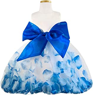 Blue Sky Kids Girl's and Baby Satin Flower Girl Royal Blue Petal Dress (3 Months to 16 Years)