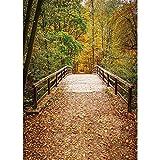 Fondo de fotografía de Bosque de otoño Fondo de fotografía de Puente de Madera Tela de Vinilo 3D para Estudio fotográfico A19 5x3ft / 1.5x1m