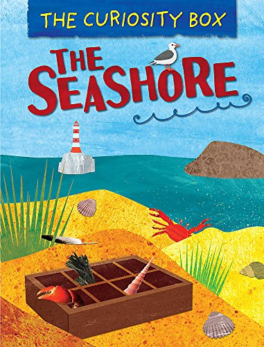 The Seashore (The Curiosity Box, Band 1)