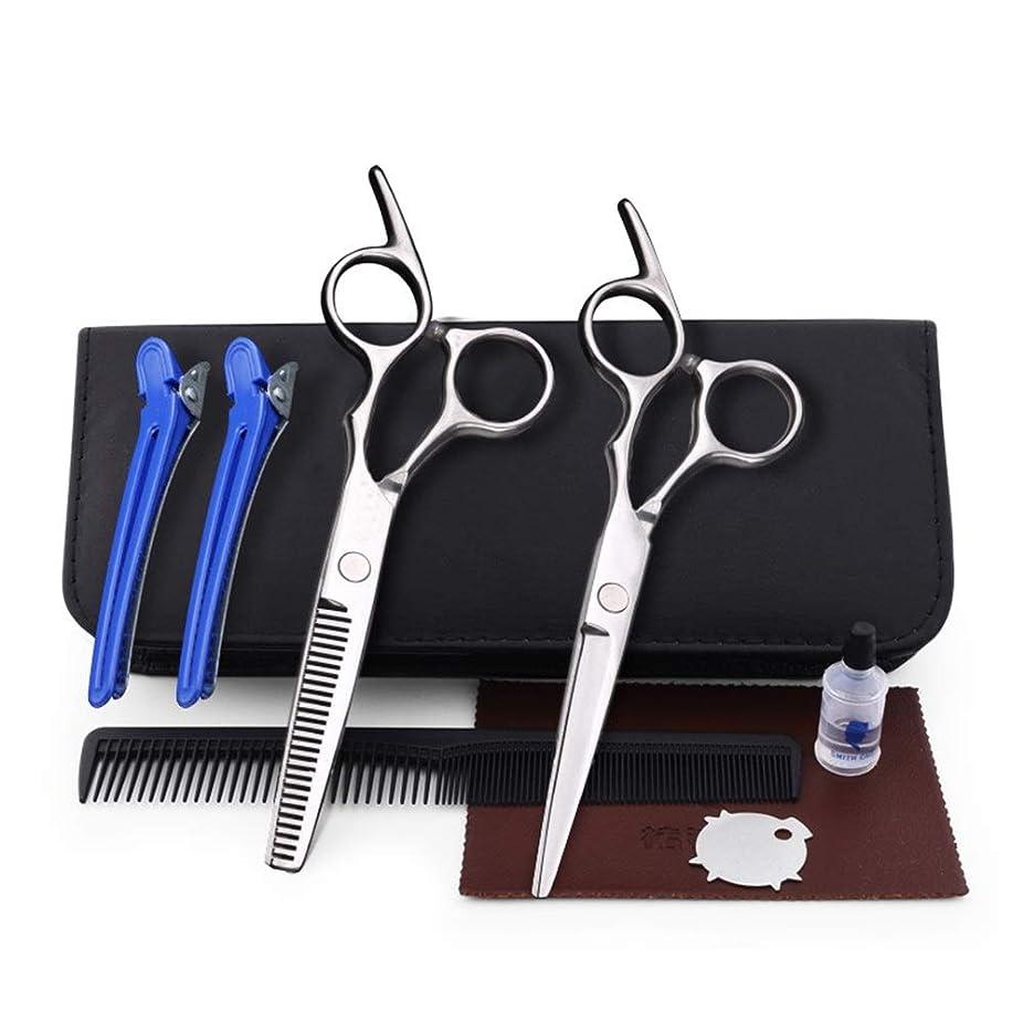 パンチ受け継ぐ用心する理髪用はさみ 6.0インチ理髪はさみ、ヘアサロンファミリーはさみセットフラット+歯はさみセットコンビネーションツールヘアカットはさみステンレス理髪はさみ (色 : Silver)