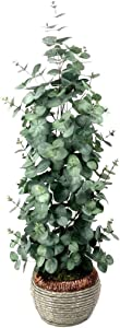 Artificial Eucalyptus Tree Plant Fake Tree Faux Floor Plant for Decoration Inside 32 inches Tall in Woven Plastic Pot -1 Pack