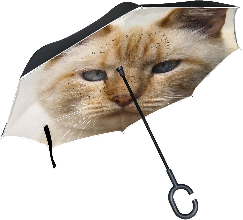 Animal Cat Ocicat Adorable Fluffy Small Cute Pet Yellow Ingreened Umbrella Large Double Layer Outdoor Rain Sun Car Reversible Umbrella