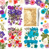 Whaline 100+ pcs Real Dried Pressed Flowers with 10g Gold Foil Flakes Pink Blue Purple Series Natural Dry Flower Leaves Handmade Flower Petals for Candle Jewelry Making DIY Resin Floral Decor, 3 Pack