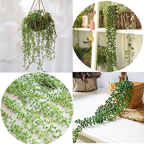happy event Unechte Blumen | 2Pcs Hängende Wand Kunststoff künstliche Sukkulenten Perlen | Grüne Reben Blume | Liebhaber Tränen