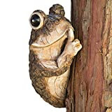 Bits and Pieces - Keep Quiet Frog Tree Peeker -...