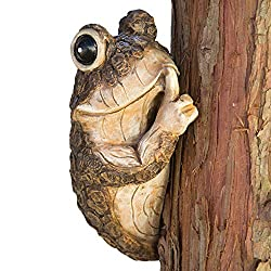 Keep Quiet Frog Tree Peeker