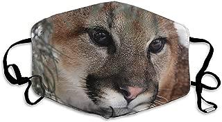GZtaowen Cougar Reusable Cotton Mouth Mask,Fashion Anti Dust Face Masks for Women Men Kids