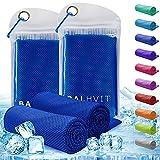 Balhvit 2 Pack Instant Relief Cooling Towel...