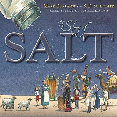 The Story of Salt audiobook cover art
