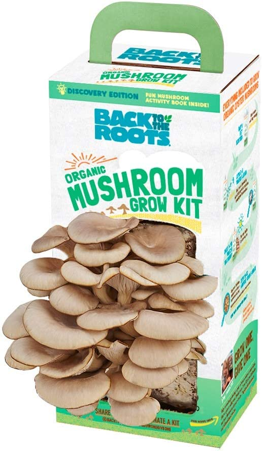 Back to the Roots Organic Mushroom Growing Kit with Grown Mushrooms