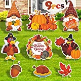 9 Pcs Thanksgiving Yard Signs with Stakes, Fall...