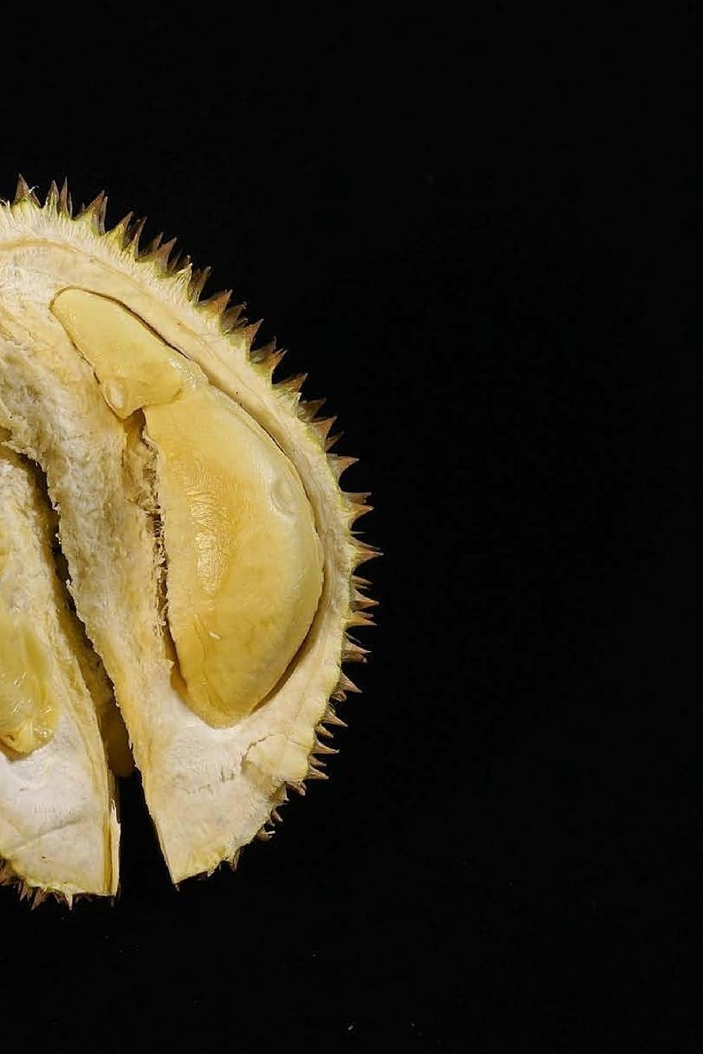 覚醒魔術師行進Durian Fruit: 150 lined pages, softcover, 6 x 9