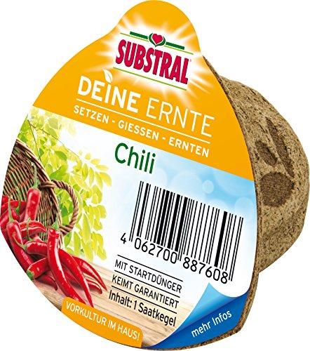 Substral Deine Ernte Saatkegel Chili Kegel aus Keimsubstrat, Dünger und Samen, 1 Stück
