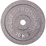 POWRX Discos Hierro Fundido 10 kg Set (2 x 5 kg) - Pesas Ideales para Mancuernas y Barras con diámetro 30 mm + PDF Workout (Plata)