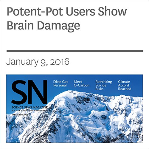Potent-Pot Users Show Brain Damage audiobook cover art