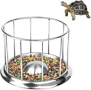 Amazon.es: comida tortugas