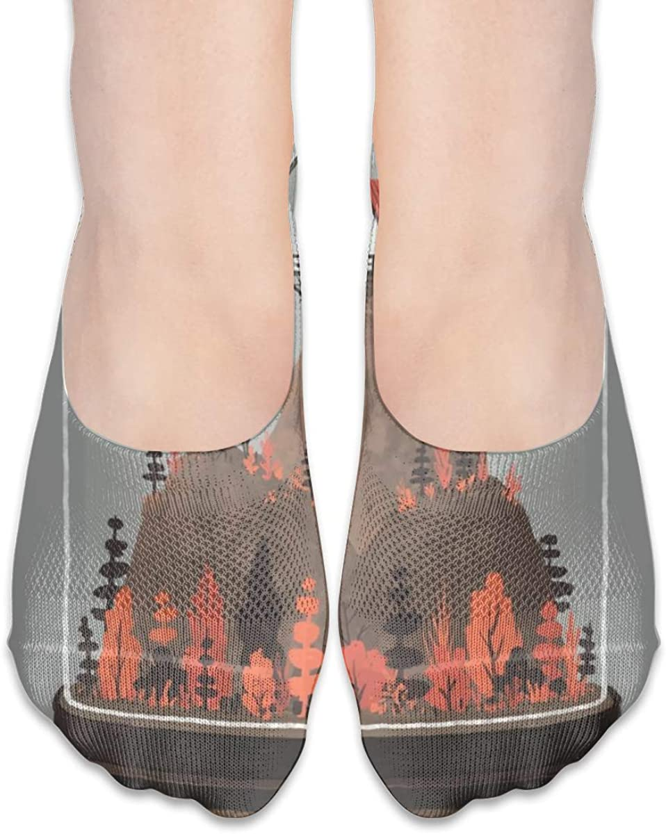Personalized No Show Socks With Wonderland Windmill Print For Women Men