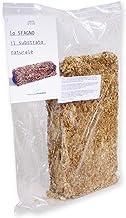 Esfagno Chileno Premium en Fibra 250 gr., Sustrato Natural de Esfagno Musgo para Orquídeas y Bonsai, Sphagnum Moss