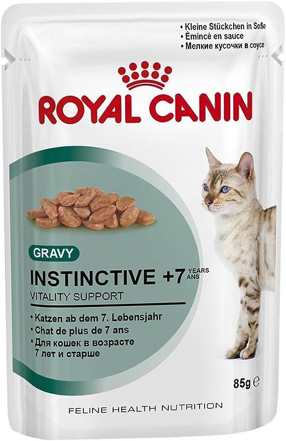 Royal Canin Gato Cuidado de Bolas de Pelo, Comida Mojado Dietética Gatos - 85 gr: Amazon.es: Productos para mascotas