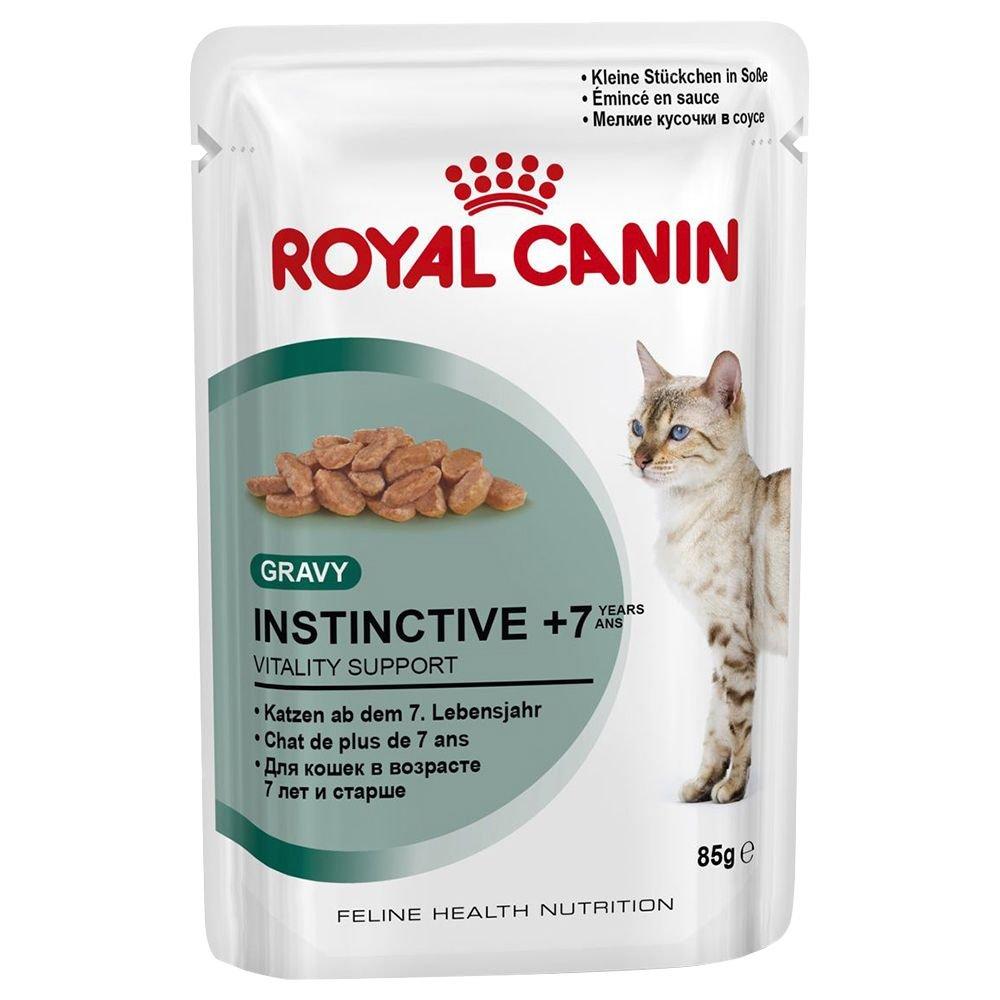 Royal Canin Gato Cuidado de Bolas de Pelo, Comida Mojado Dietética ...