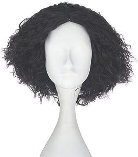 Miss U Hair Synthetic Short Fluffy Curly Hair Men Boy Party Cosplay lolita Wig Halloween Adult(Dark Brown)