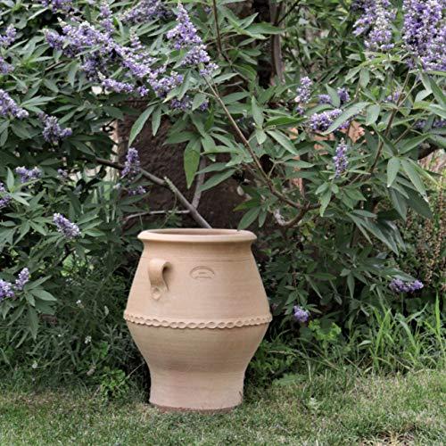 Kreta-Keramik frostfeste Terracotta Amphore mit Henkel | von Hand gefertigt, absolut witterungsbeständig | tolle Dekoration für Garten, Terrasse oder Balkon | Thymus 2 40 cm