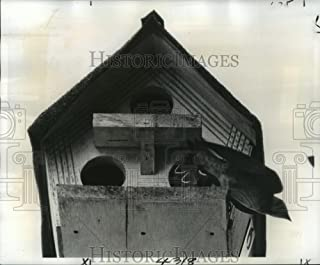 Historic Images 1977 Press Photo A Mother Purple Martin Bird Takes Flight from a Birdhouse - 8.25 x 10 in
