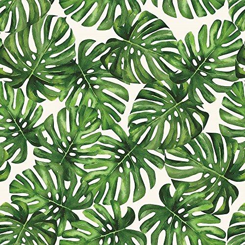 Papel de Parede Vinílico, Folhagem Costela de Adão, Verde, 1000x52 cm, Bobinex Uau