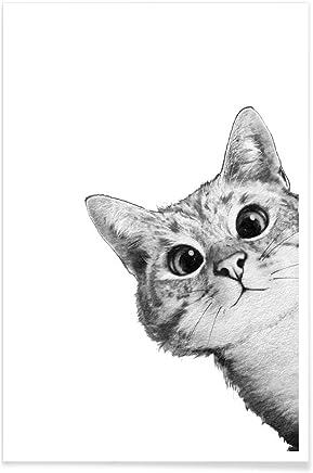 Amazon Fr Chat Noir Chat Blanc Impressions Sur Toile