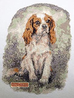cavalier king charles spaniel cross stitch