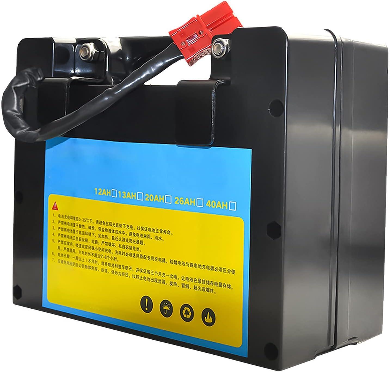 LONGRING Batería LiFePo4 24v 12ah-60ah Batería eléctrica para Silla de Ruedas Batería Ligera Paquete de batería de fosfato de Hierro de Litio de Gran Capacidad,D,24V 20AH
