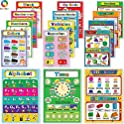 15-Pieces Teytoy Laminated Preschool Educational Posters