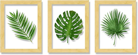 Art Street Set of 3 Wooden Wall Art Leaf Designed Clear Acrylic Glass Framed Art Print (Size - 11.2x31 Inches)