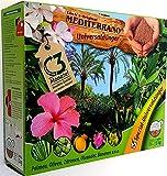 Mediterrano Lück´s Palmen-Universal-Spezial-Dünger 3Kg Schüttpackung Tropische mediterrane Palmen-Bananen-Oliven-Bäume-Zitronen-Baum-Hanf-Zitrus-Pflanzen-Garten-Dünger düngen -