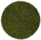 """SuperMoss (26310) Moss Soil Toppers (Place Mats), Fresh Green, 10"""" (3 units)"""