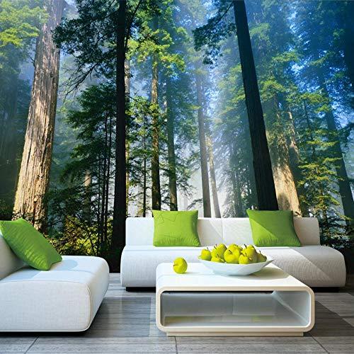Fotobehang Bossen Natuur Mist Bomen Muur Kunst 3D Muren Verwijderbare Decals Office Home Decoratie 300 x 210 cm.