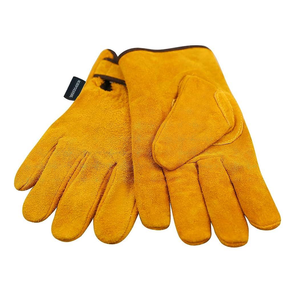リーダーシップまだら元に戻す耐熱牛革 キャンプグローブ 裏付き 耐熱グローブ 防寒革手袋 オレンジ (M)