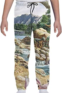 UUE Youth Sweatpants Dinosaur Boys and Girls Soft and Cozy 3D Casual Active Sports Trousers