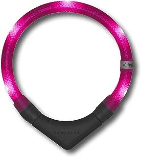 LEUCHTIE® Leuchthalsband Plus I LED Halsband für Hunde I 100 h Leuchtdauer I wasserdicht I enorm hell