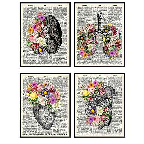 Organs & Flowers Dictionary Wall Art Decor Set - 8x10 Vintage Upcycled Unframed Prints for Home or Doctor Office - Unique Steampunk Goth Room Decor - Gift for Doctor, Nurse, PA, Med Student, Best gifts for doctor's office