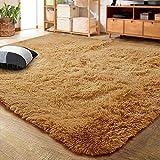 LOCHAS Ultra Soft Indoor Modern Area Rugs Fluffy Living Room Carpets for Children Bedroom Home Decor Nursery Rug 3x5 Feet, Khaki Orange